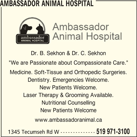 "Ambassador Animal Hospital (519-971-3100) - Display Ad - AMBASSADOR ANIMAL HOSPITAL Dr. B. Sekhon & Dr. C. Sekhon ""We are Passionate about Compassionate Care."" Medicine. Soft-Tissue and Orthopedic Surgeries. Dentistry. Emergencies Welcome. New Patients Welcome. Laser Therapy & Grooming Available. Nutritional Counselling New Patients Welcome www.ambassadoranimal.ca 1345 Tecumseh Rd W -------------- 519 971-3100"