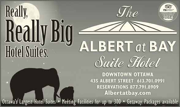 Albert At Bay Suite Hotel (613-238-8858) - Display Ad - RallBig DOWNTOWN OTTAWADOWNTOWN OTTAWA 435 ALBERT STREET  613.701.0991435 ALBERT STREET  613.701.0991 RESERVATIONS 877.791.8909RESERVATIONS 877.791.8909 Albertatbay.comAlbertatbay.com Ottawa s Largest Hotel Suites   Meeting Facilities for up to 300   Getaway Packages availableOttawa s Largest Hotel Suites   Meeting Facilities for up to 300   Getaway Packages available