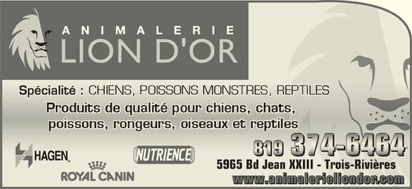 Animalerie Lion d'Or (819-374-6464) - Annonce illustrée======= - Spécialité : CHIENS, POISSONS MONSTRES, REPTILES Spécialité : CHIENS, POISSONS MONSTRES, REPTILES 5965 Bd Jean XXIII - Trois-Rivières5965 Bd Jean XXIII - Trois-Rivières www.animalerieliondor.animaleriwww ndorelioleri.anima