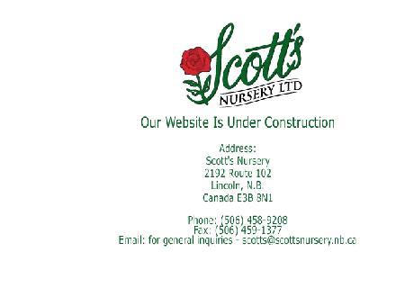 Scott's Flowers (506-458-9208) - Website thumbnail - http://www.scottsnursery.nb.ca