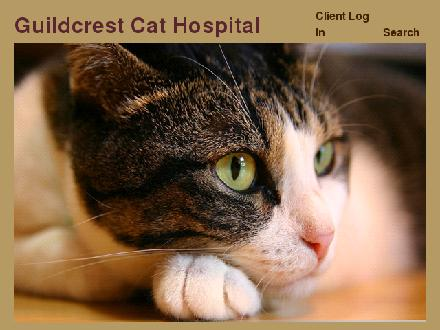 Guildcrest Cat Hospital (416-267-4697) - Onglet de site Web - http://www.guildcrestcathospital.ca