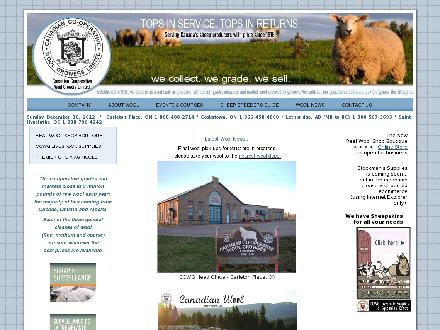Real Wool Shop (613-257-2714) - Website thumbnail - http://www.wool.ca