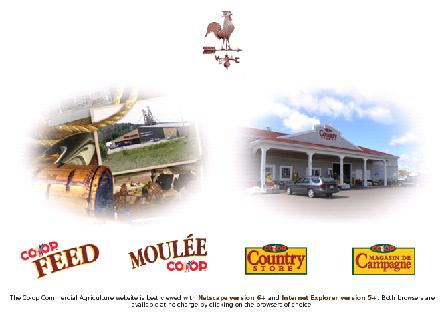Co-Op Country Store (709-368-4321) - Onglet de site Web - http://www.co-opcountry.com