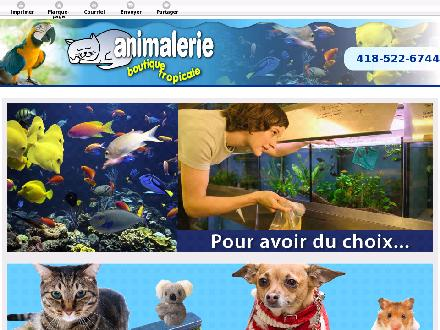 Animalerie Boutique Tropicale (418-522-6744) - Website thumbnail - http://boutiquetropicale.com