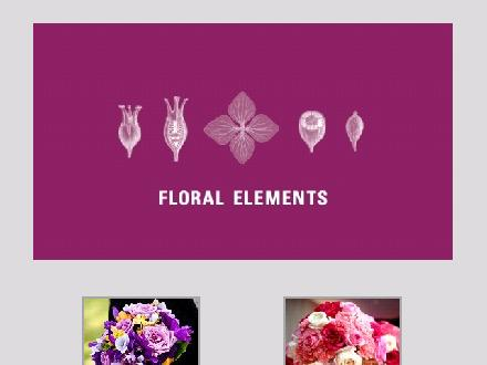 Floral Elements (204-786-2433) - Onglet de site Web - http://www.floralelements.ca
