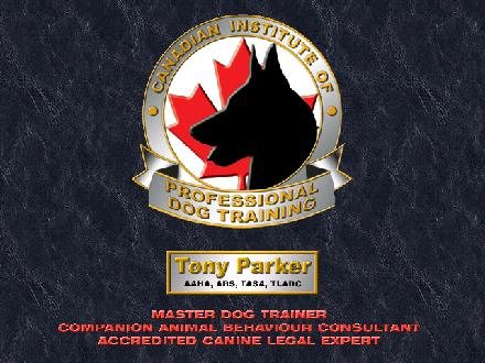 Canadian Institute Of Professional Dog Training (604-514-9221) - Onglet de site Web - http://www.dogtrainingsmartline.com