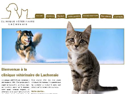 Clinique Vétérinaire De Lachenaie (450-582-7300) - Website thumbnail - http://www.veterinairelachenaie.com