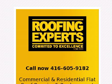 Roofing Experts (416-605-9182) - Website thumbnail - http://www.roofingexperts.ca
