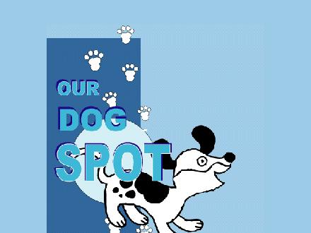 Our Dog Spot (1-888-496-0199) - Website thumbnail - http://www.our-dog-spot.com