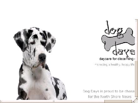 Dog Days Daycare Ltd (604-990-3640) - Website thumbnail - http://www.dogdaysdaycare.com