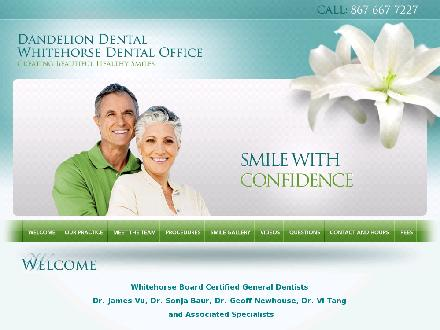 Dandelion Dental Clinic (867-667-7227) - Onglet de site Web - http://www.dandeliondental.ca