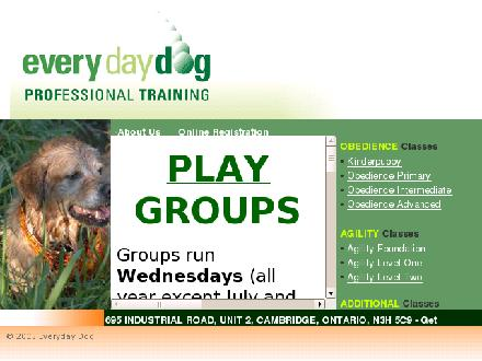 Everyday Dog (519-620-8176) - Website thumbnail - http://www.everydaydog.ca
