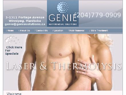 Genie Solutions (204-779-0909) - Website thumbnail - http://www.geniesolutions.ca