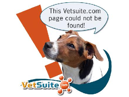 Crowfoot Veterinary Hospital (403-241-8944) - Website thumbnail - http://www.crowfootvet.vetsuite.com