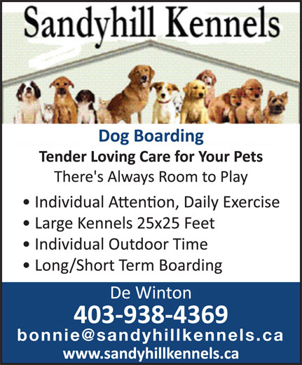 Sandyhill boarding kennels de winton ab box 41 site for Dog boarding places near me