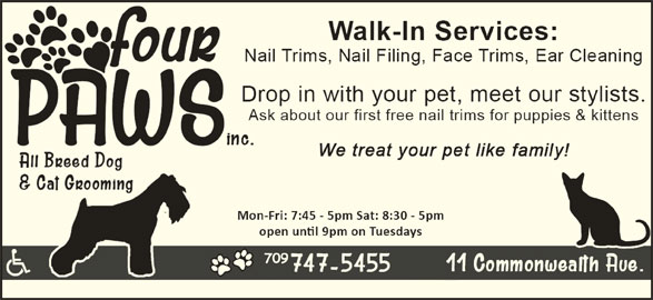 Four Paws Dog And Cat Grooming Inc Mount Pearl Nl