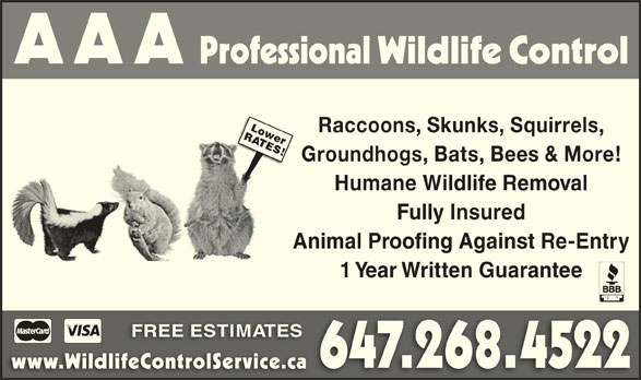 AAA Professional Wildlife Control (647-268-4522) - Display Ad - Humane Wildlife Removal Fully Insured Animal Proofing Against Re-Entry 1 Year Written Guarantee FREE ESTIMATESFREE 647.268.4522 www.WildlifeControlService.cawww.WildlifeControlService.ca RLower Raccoons, Skunks, Squirrels, ATES! Groundhogs, Bats, Bees & More! Humane Wildlife Removal Fully Insured Animal Proofing Against Re-Entry 1 Year Written Guarantee FREE ESTIMATESFREE 647.268.4522 www.WildlifeControlService.cawww.WildlifeControlService.ca RLower Raccoons, Skunks, Squirrels, ATES! Groundhogs, Bats, Bees & More!