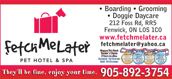 Dog Kennels In The Niagara Region