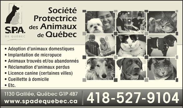 Société Protectrice des Animaux de Québec (418-527-9104) - Annonce illustrée======= - www.spadequebec.cawww.spadequebec.ca 418-527-9104418-527-9104 Implantation de micropuce Animaux trouvés et/ou abandonnés Réclamation d'animaux perdus Licence canine (certaines villes) Cueillette à domicile Etc.  Etc. 1130 Galilée, Québec G1P 4B71130 Galilée, Québec G1P 4B7 Adoption d'animaux domestiques